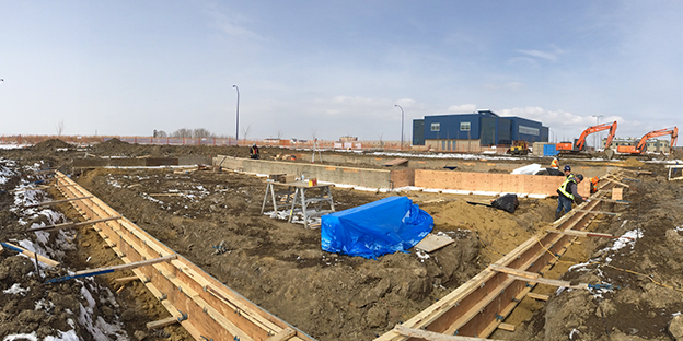 Site Update: Freezing Temps And Focus On Foundation